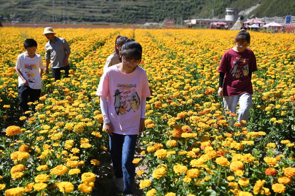 Gansu: Gobierno de aldea de Lisai aprovecha recursos naturales para desarrollar turismo rural