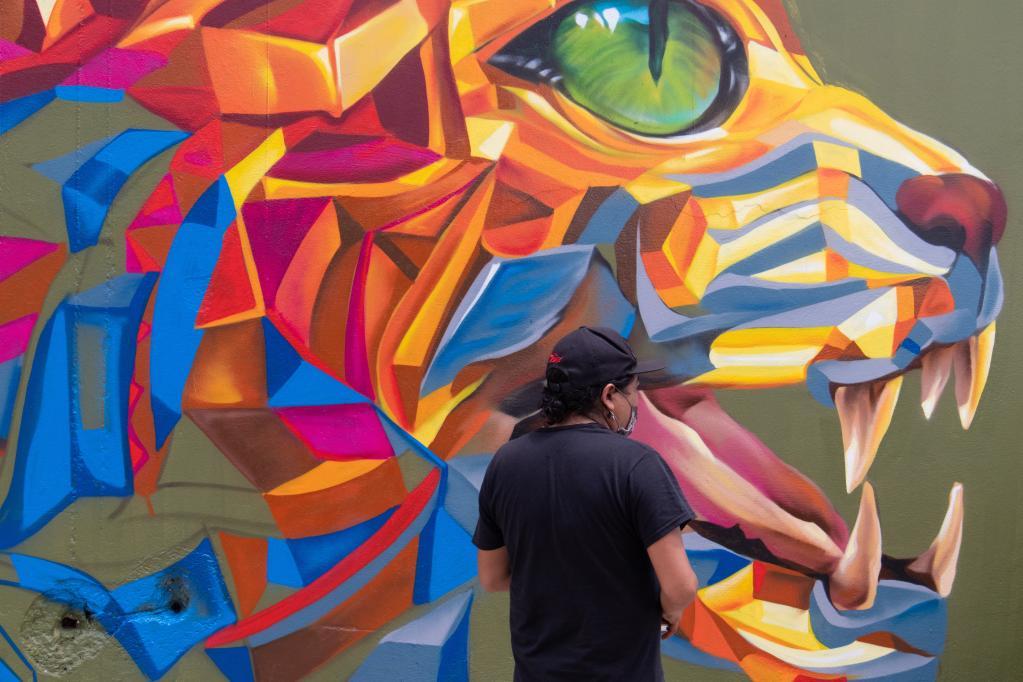 """Expo-Graff """"felinos de la región"""" en México"""